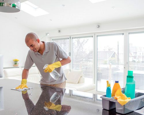 professional spring clean company