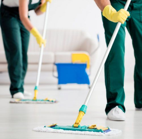professional house cleaning company